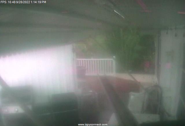 Back Door Cam Image